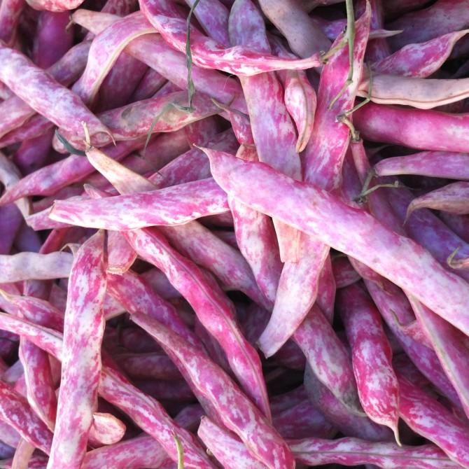 Farmer's Market #ProducePorn